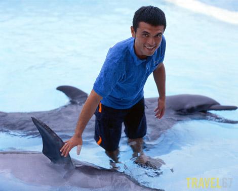 Dolphin trainer Ryo Nakasone at Okinawa Expo Park