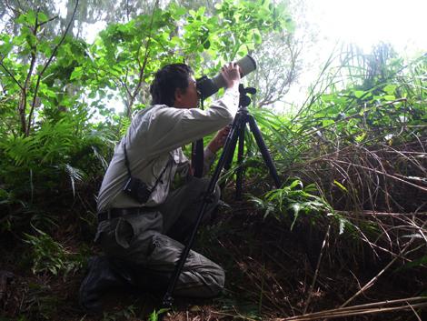 Birder Ichiro Kikuta on lookout for the Noguchi-gera