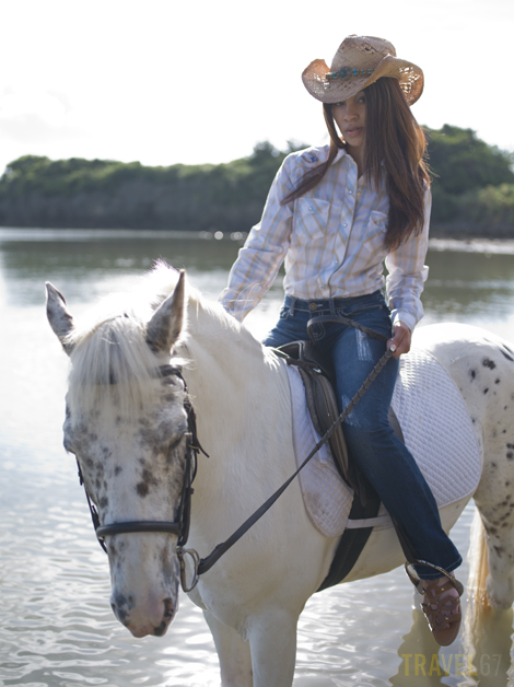 Cotton - Horseback (1)