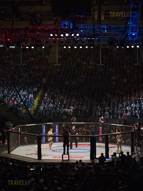 UFC 144: Edgar vs. Henderson - Saitama Super Arena, Tokyo