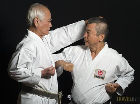 Hanshi 10th dan Toshimitsu Arakaki and Hanshi 10th dan Yoshitaka Taira
