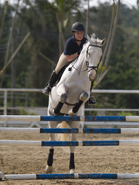 Alexis on Sky - Pick and Tuck Dressage and Eventing Team