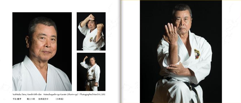 2-page spread for Taira sensei.