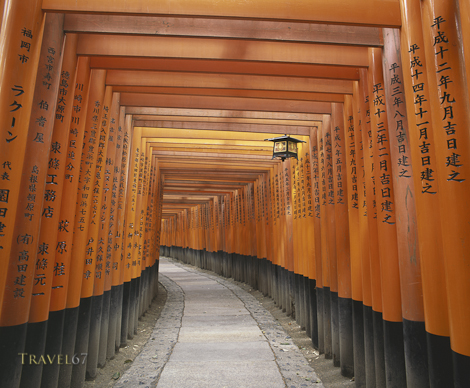 Fushimi Inari Shrine , Kyoto