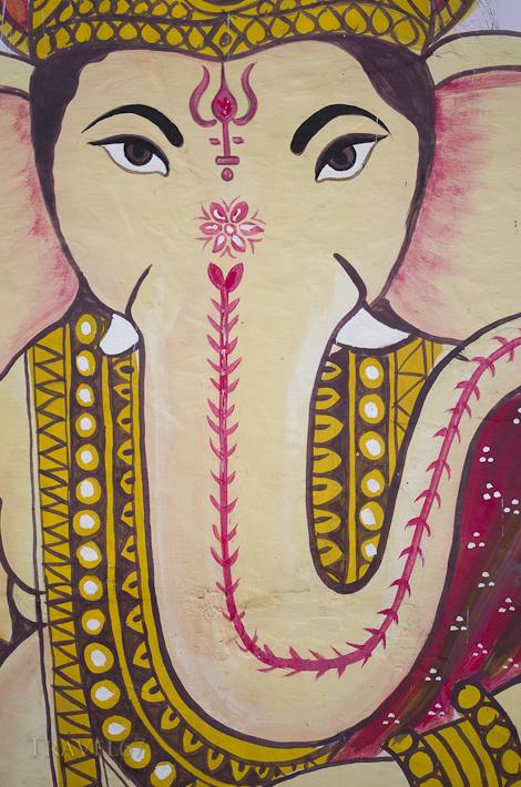 Street Art - Jodhpur, India