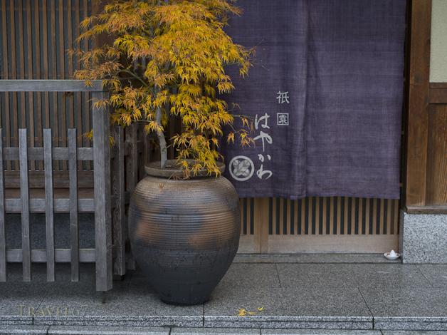 Morijio, or mori-shio (盛塩) purifying bowls of salt