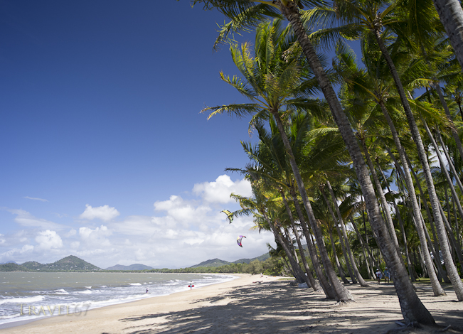 Palm Cove Paradise