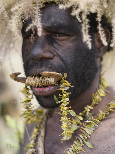 Eyarokawe Singsing Group, Daulo District, Eastern Highlands Province - Goroka Show, Papua New Guinea