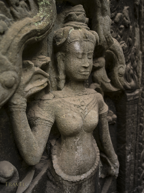 Apsara carvings - Ta Prohm temple ruin. Siem Reap, Cambodia