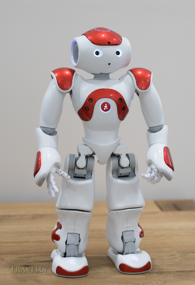 Nao an autonomous, programmable humanoid robot by Aldebaran Robotics.