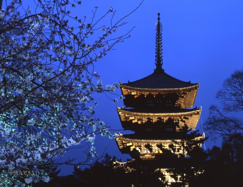 Kofuku-ji Pagoda, Nara, Japan