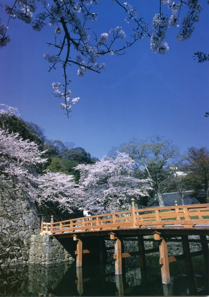 Castles of Japan DSE900