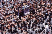 Sanja Matsuri, Asakusa, Tokyo.   Sometimes a different angle gives you a new perspective on a festival. Tightly packed, pushing and shoving, teams of men and women carry mikoshi towards Asakusa Shrine.