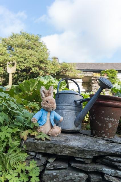 Hill Top, home of Beatrix Potter, creator of Peter Rabbit. Lake District, Cumbria, UK