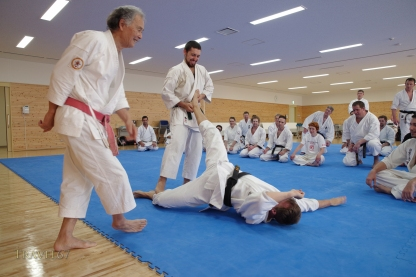 Hokama Tetsuhiro teaching at Karate Kaikan, Okinawa, Japan.